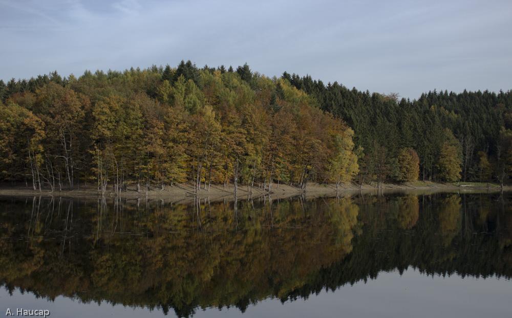 Spiegelung der Herbstfarben