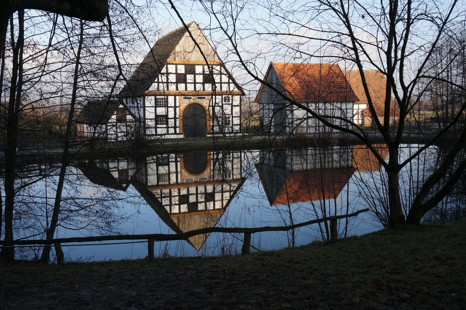 Spiegelung im Dorfteich