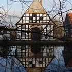 Spiegelung im Dorfteich (2)