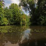 Spiegelung im Fluss