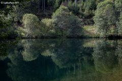 Spiegelung im Märtesweiher
