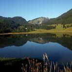 Spiegelung im See am Spitzingsee in Bayern