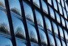 Spiegelungen am Gewächshaus