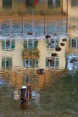 Spiegelungen am Toblacher See