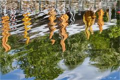Spiegelungen in einem kleinen See