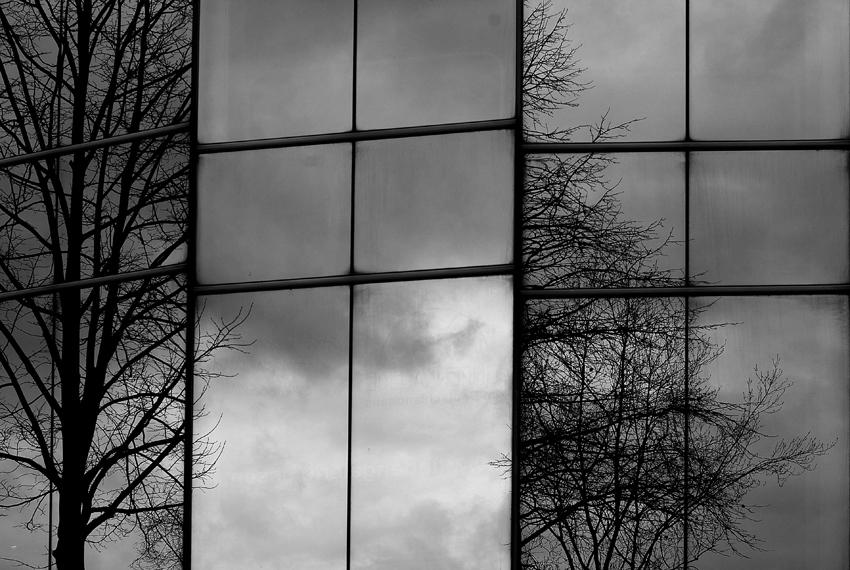 Spiegelwelten
