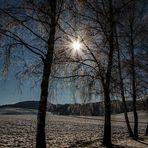 Spiel der Sonnenstrahlen....