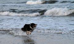 Spiel mit den Wellen