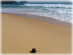 Spielball der Wellen....