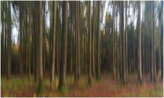 Spielerei im Herbstwald