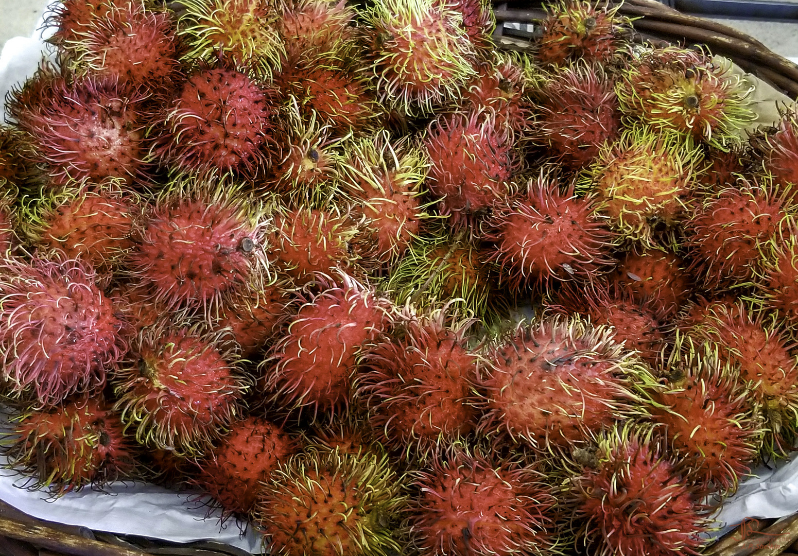 Spiney Fruit