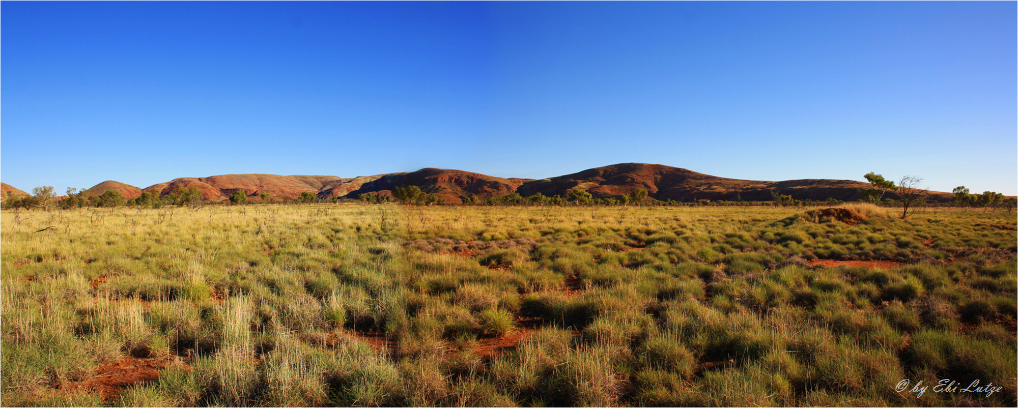 ** Spinifex and the Streckfuss Hills **