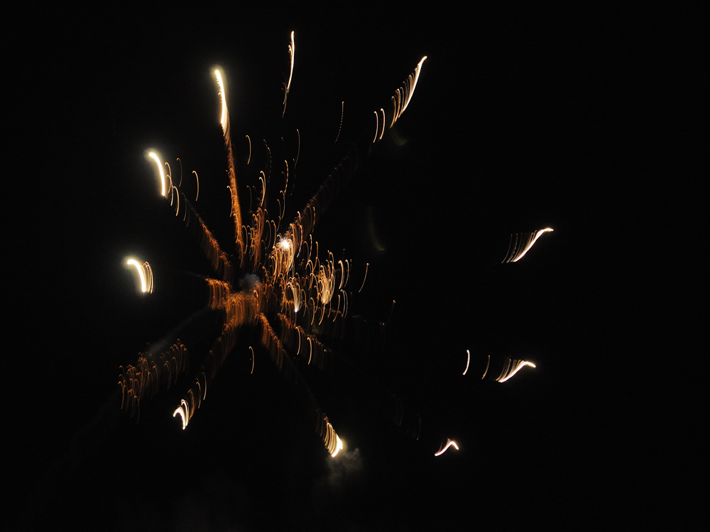 Spinnweb