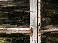 Spinnwebenfenster (2)