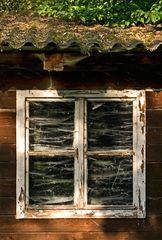 Spinnwebenfenster
