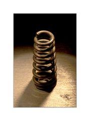 Spiralfeder (I)