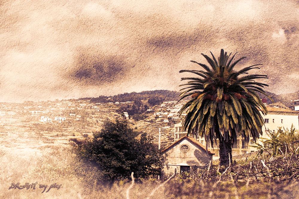 Spirit of Madeira