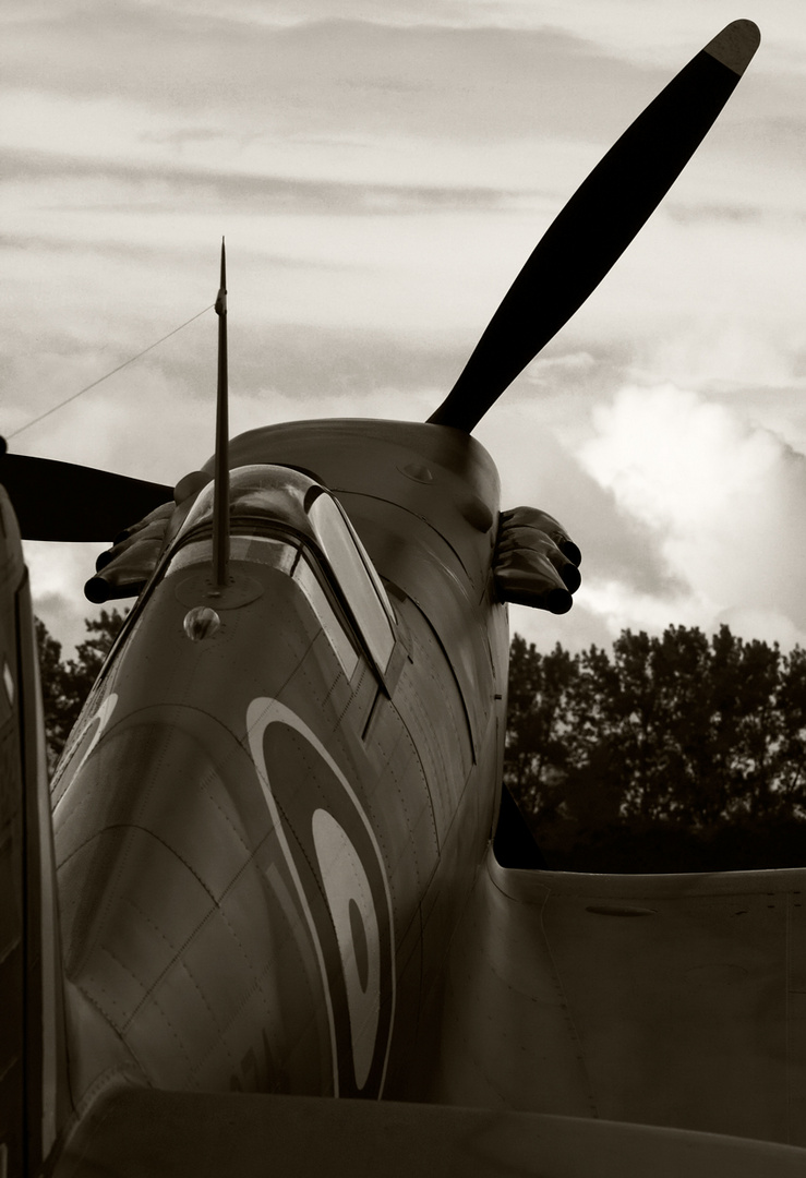 spitfire goodwood