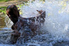 ... Splash ... (2)
