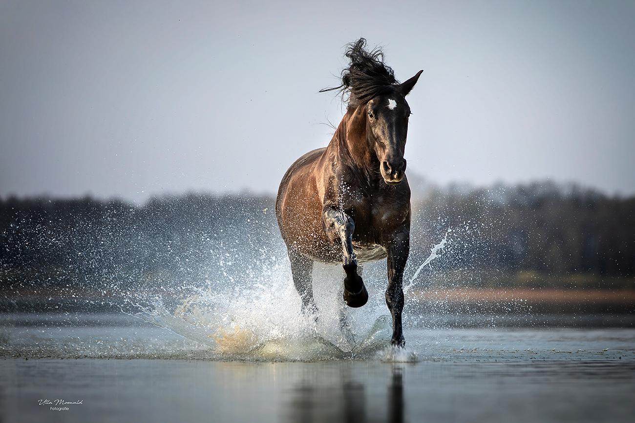 ...splash...