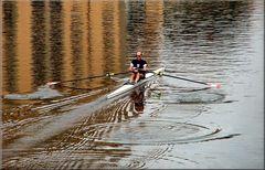 Sport sull`Arno.