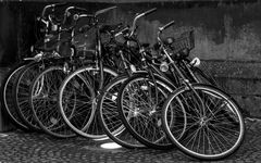 Spot an, für das Fahrraddomino...