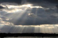 Spotlight auf die geflutete Landschaft