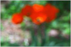 spring colors II