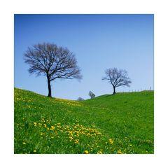Spring Colours - Frühlingsfarben