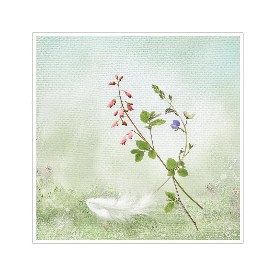Spring Impression 3