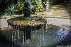 Springbrunnen im Parque Terra Nostra Furnas