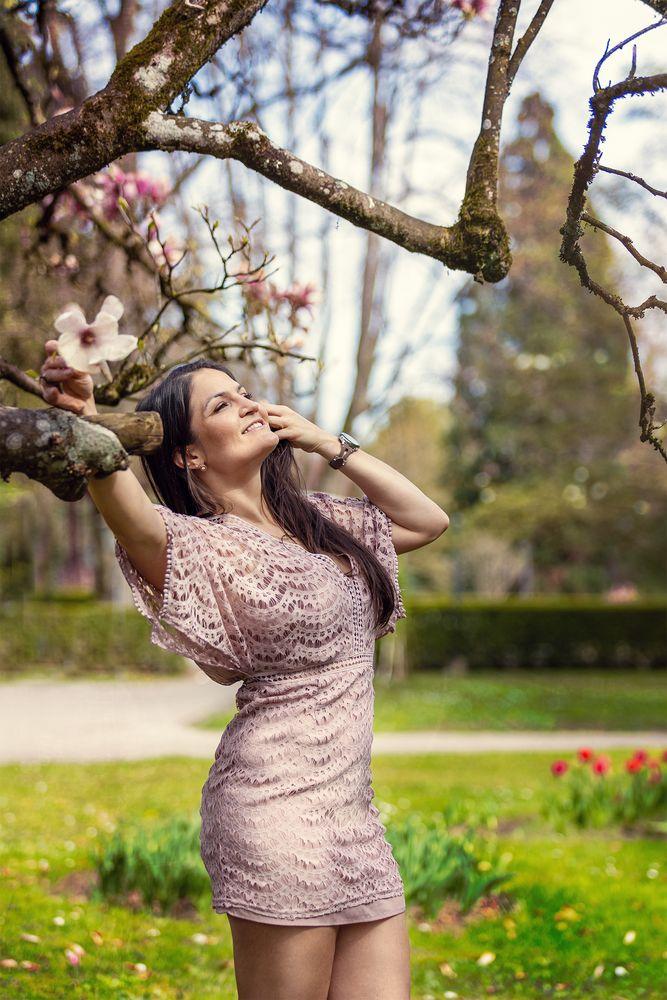 Springtime Magnolia