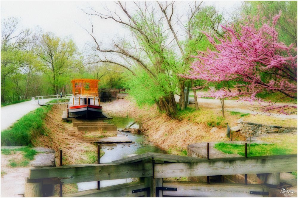 Springtime on the C & O Canal - A Potomac Impression
