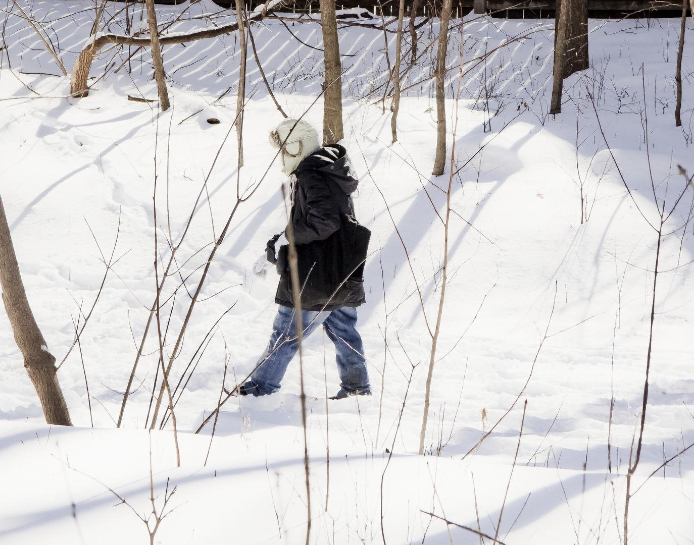 SPRINGTIME WALK - TORONTO - CANADA
