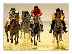 SPRINT! Duhner Wattrennen 2008