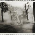 Spuk im Winterwald (c) by Angel of Destruction