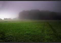 Spur im Nebel