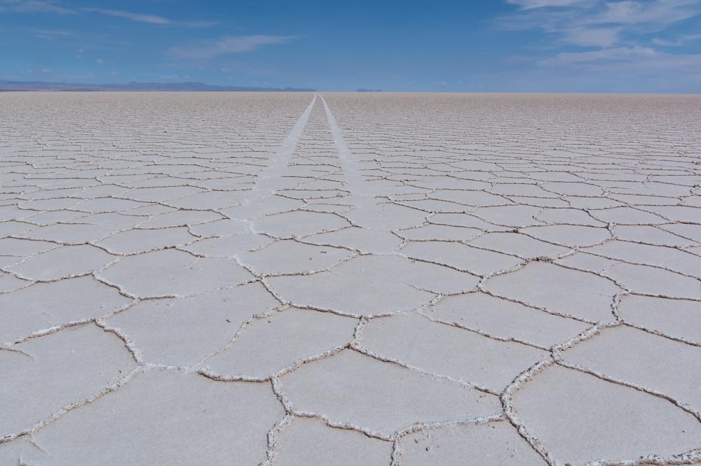 Spur im Salzsee