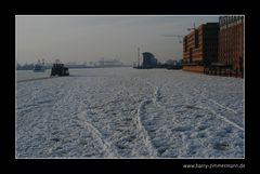 Spuren im Eis