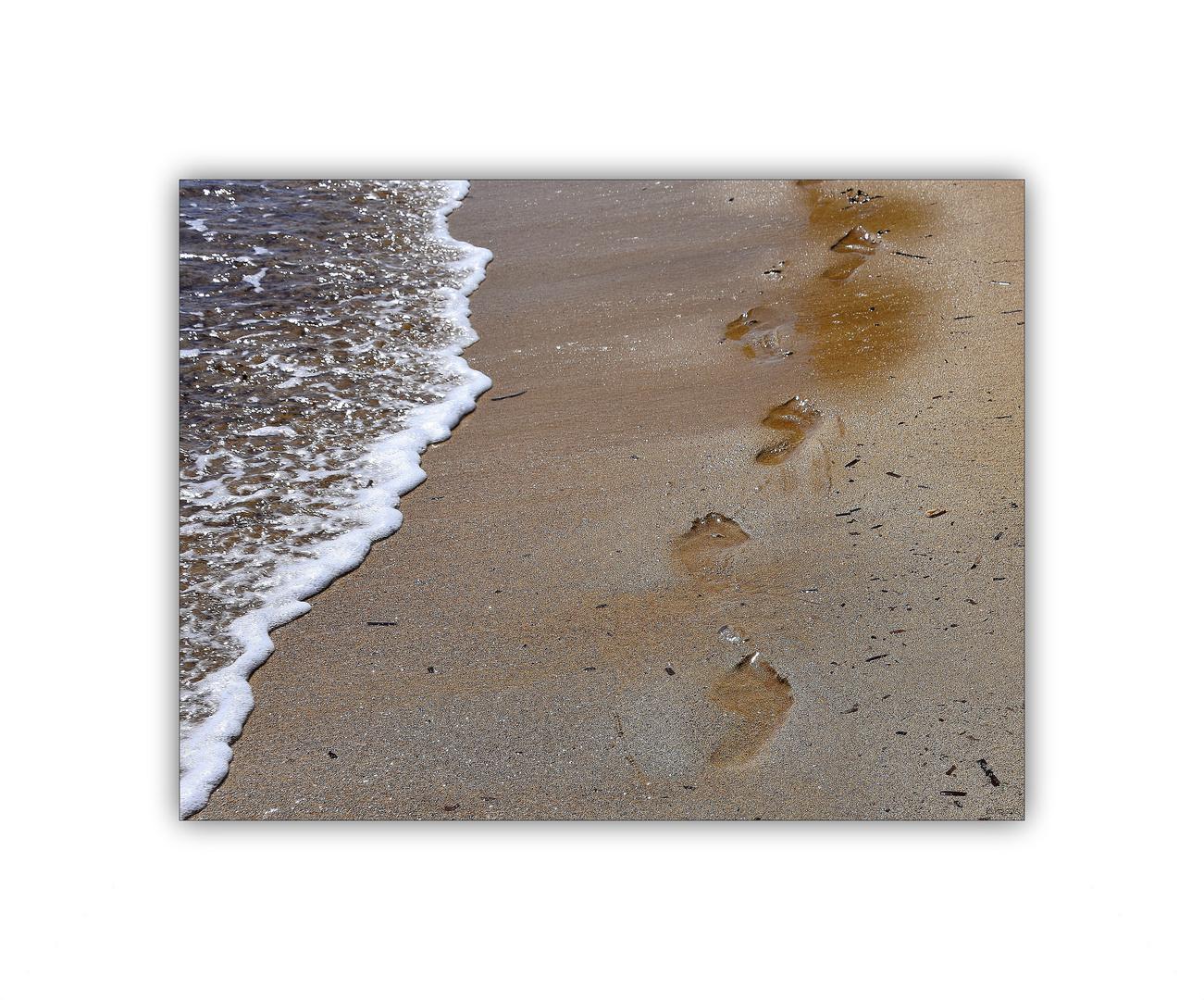 .spuren im sand.