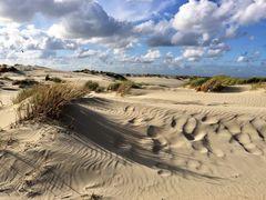 *Spuren im Sand*
