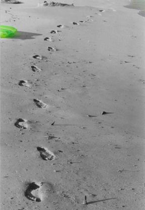 Spuren im Sand des Lebens