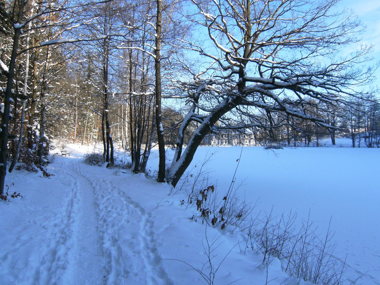 Spuren im Schnee..