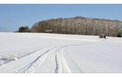 Spuren im Schnee -2-