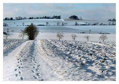 spuren im Schnee.....