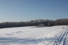 Spuren im Schnee konnte man vor Jahren finden