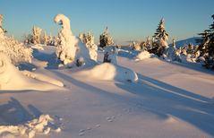 Spuren im Schnee_2