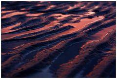 Spuren im Watt (3)