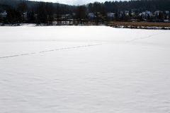 Spuren quer über den abgelassenen See