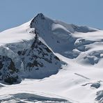 Spuren zum höchsten Monte Rosa-Gipfel